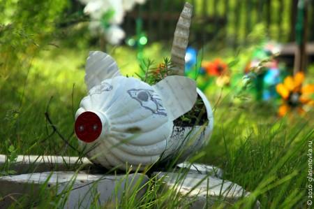 Свинка из цветника у Гремячевского дома культуры