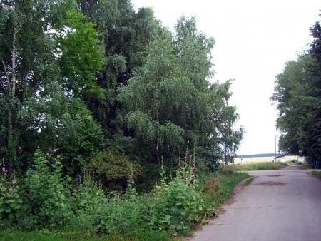 Окрестности посёлка Глазуновка