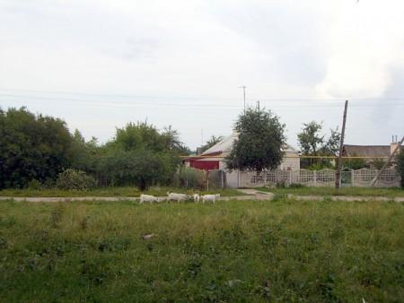 Фото посёлка Глазуновка