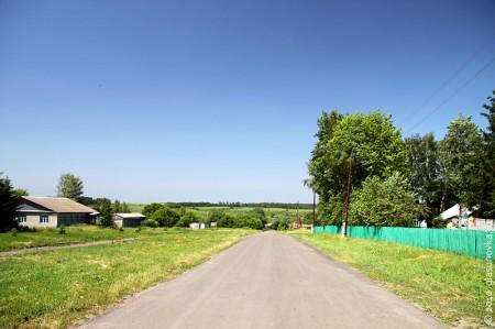 Центральная улица деревни Гремячево (Глазуновский район)