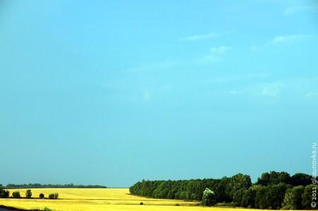 Это поле — чей-то пай.