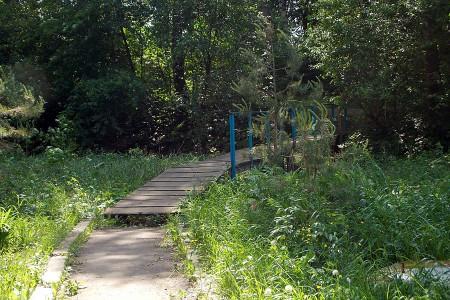 Дорога к роднику около пруда Канатка в Глазуновке.